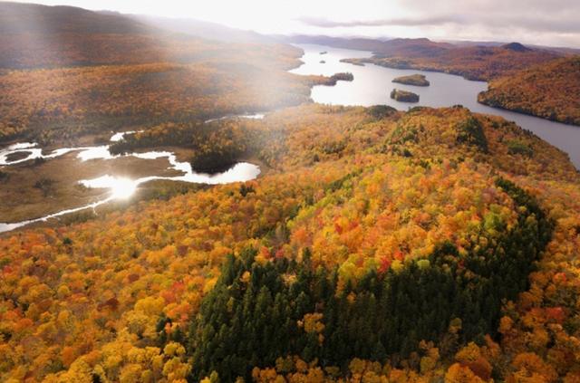 画像: Canada.紅葉のピークの時期や場所は毎年変化する。この年は出遅れたと思ったが、偶然が重なり最高の光景に出会えた。