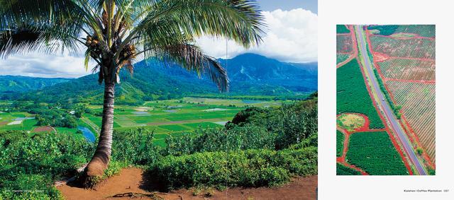 画像4: 5月16日(月)に、写真集『HAWAII』(写真:杉本 篤史)が刊行されます。