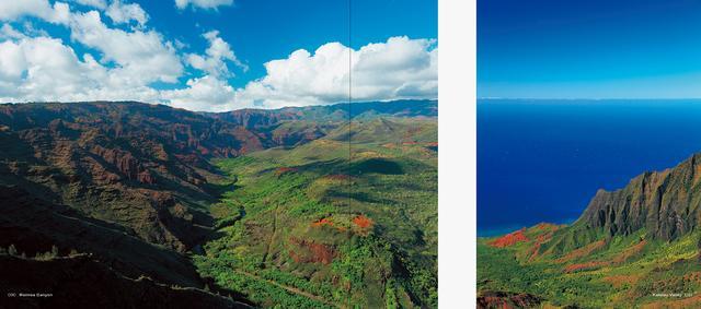 画像5: 5月16日(月)に、写真集『HAWAII』(写真:杉本 篤史)が刊行されます。