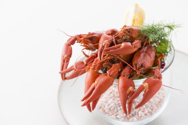 画像2: 現代北欧料理レストラン『アクアヴィット』の「クレイフィッシュ・フェア」