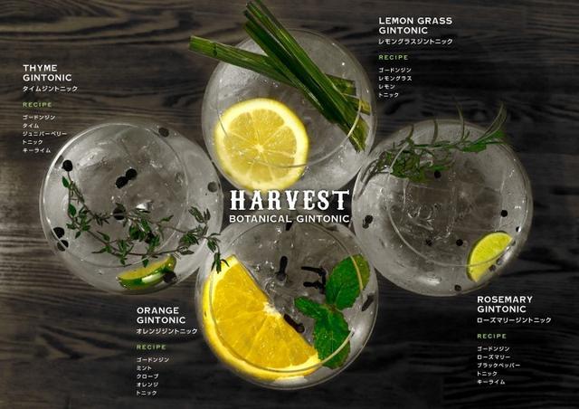 画像2: ハーブを使用したカクテルや無農薬野菜を使った料理を楽しむ収穫祭『HARVEST ハーベストVol.4』