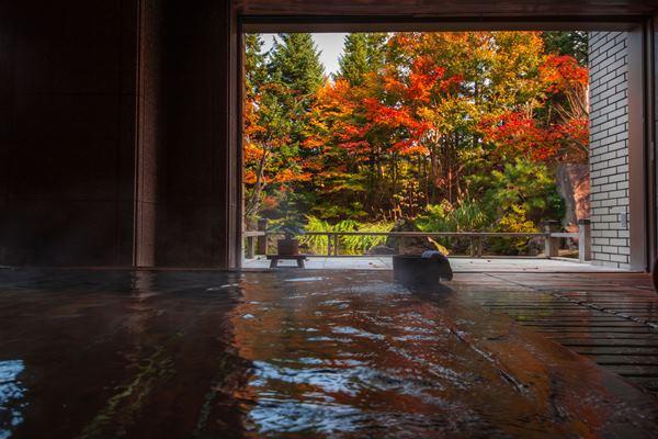 画像: 秋の贅沢なひとときを感じる紅葉温泉