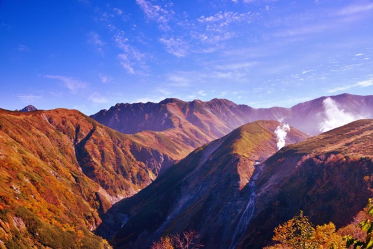 画像: 世界遺産白神山地ガイドツアー