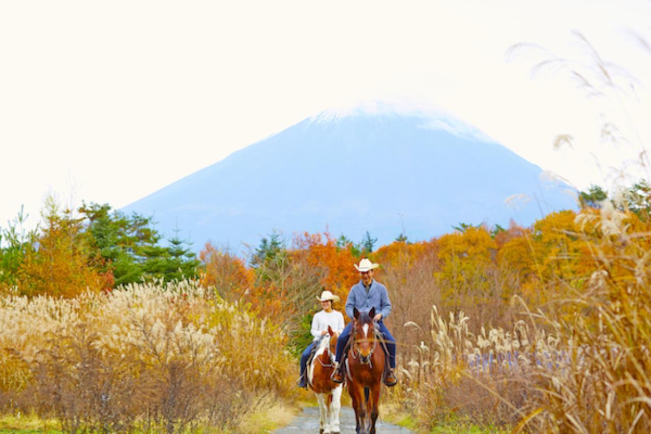 画像: 赤黄に染まる雄大な富士山麓を臨む 「紅葉富士のホーストレッキング」