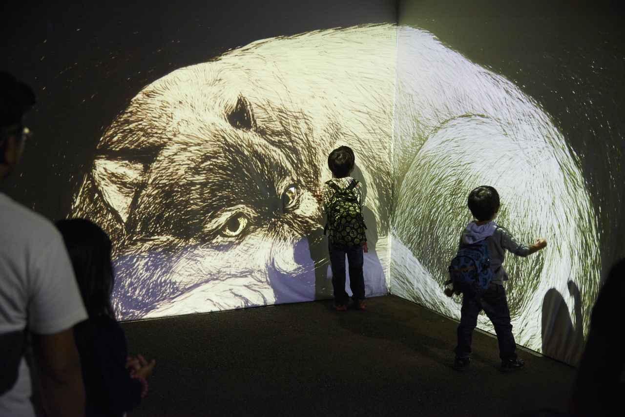 画像2: 横浜市立金沢動物園で8月27日、28日開催