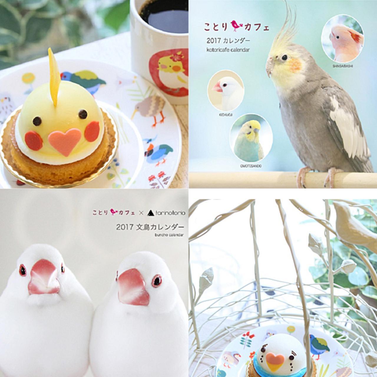 画像: 撮影希望!小鳥とスイーツ投稿で「ことりカフェ」写真部からプレゼント♪