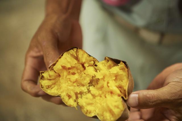 画像2: 種子島・幻の安納芋使ったほっこりする味…
