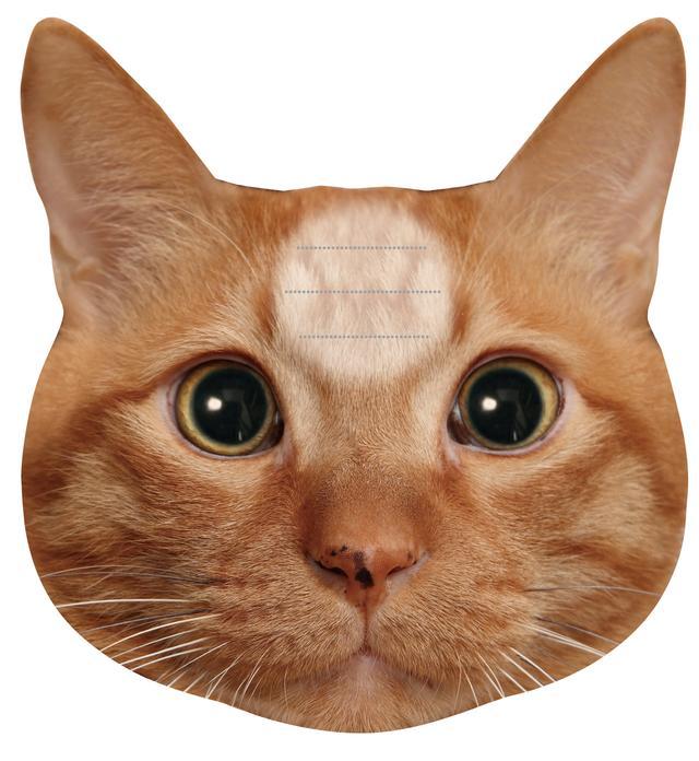 画像2: 『猫のひたいふせんメモ』に新しい仲間2匹が登場!