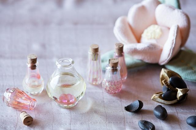 画像: 種から抽出する「椿油づくり体験」が新登場