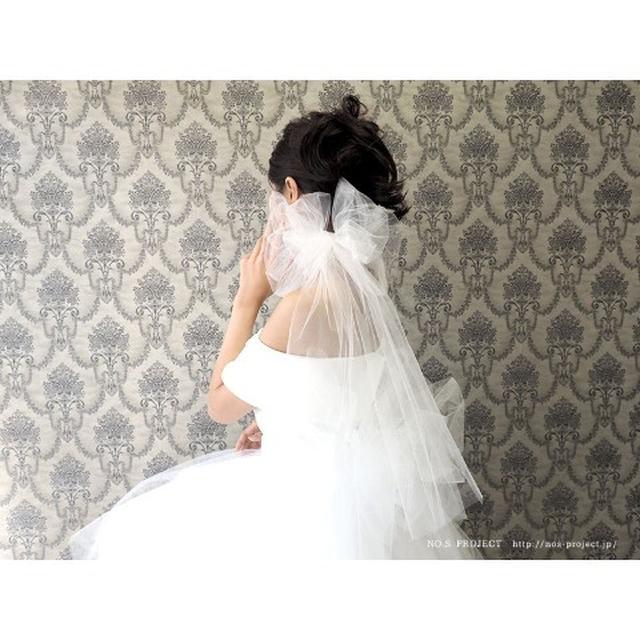 画像3: バレリーナチュチュドレス 白鳥(ホワイト)【NO.S PROJECT】29,160円(税込み)