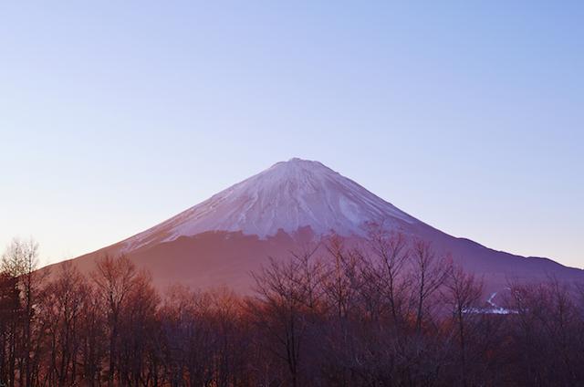 画像: 富士山と樹海