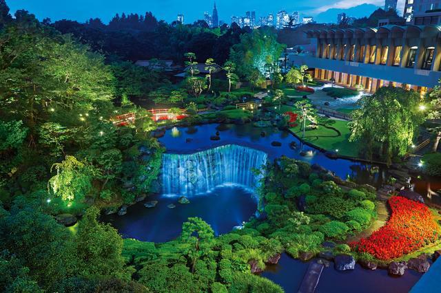 画像: 日本庭園で夜桜めぐり~