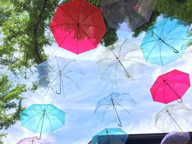 画像: 梅雨の季節も屋外で楽しめるイベント「アンブレラスカイ2017」