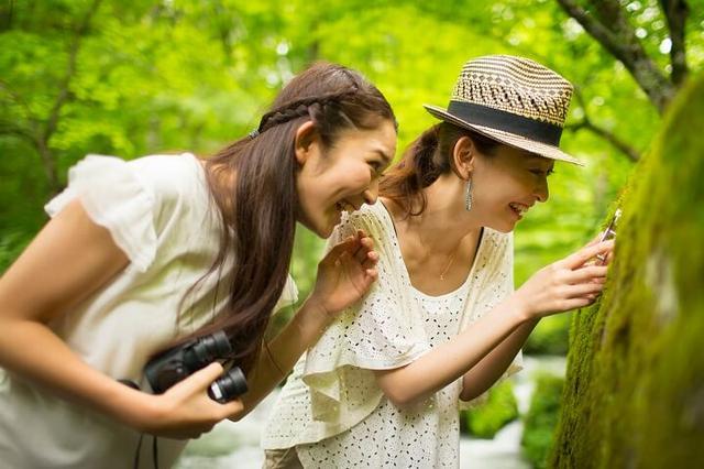 画像1: 苔の世界を満喫する滞在プラン「苔ガールステイ」
