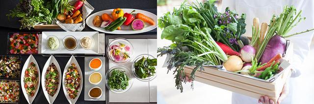 画像: お台場の風を感じる、緑あふれるテラス席でサラダブッフェを!