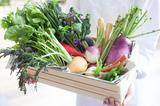 画像: 埼玉県の農家直送の新鮮な無農薬野菜サラダブッフェも充実しており、世界各国の約50種類のメニューがお楽しみいただけます