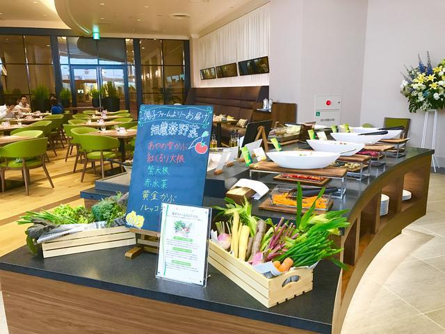 画像: 陽子ファームより届いた新鮮野菜がたっぷり!