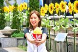 画像: ◇マンゴーミルク ¥900(税込) 夏にピッタリな濃厚マンゴーとyelo特製ミルクの優しい味わいが市販の練乳とは異なり、軽くてフレッシュな口あたり。