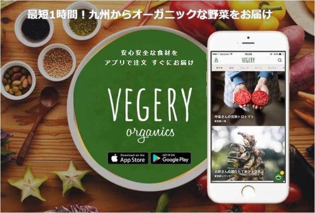 画像1: 九州産オーガニック野菜デリバリーサービス「VEGERY」宅配エリアを全国地域に拡大