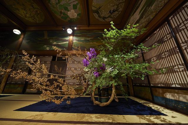 画像1: 紅葉から秋の七草まで 秋の草花が文化財に咲き乱れる…