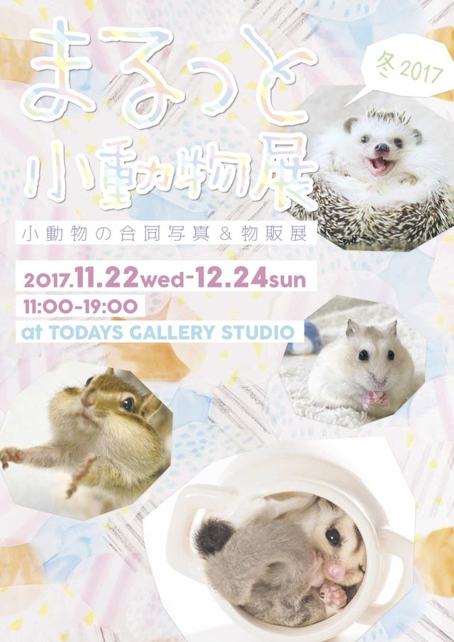 画像: まるっと小動物展 冬 2017 | 台東区浅草橋のギャラリー「TODAYS GALLERY STUDIO」