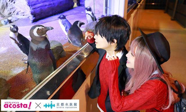 画像2: 今年のクリスマスイヴは京都水族館のコスプレ撮影で決まり!