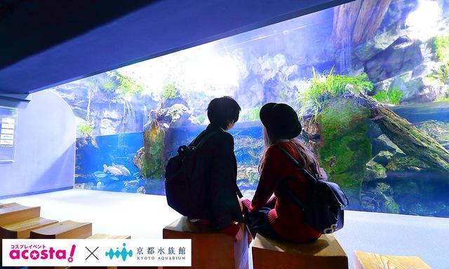 画像4: 今年のクリスマスイヴは京都水族館のコスプレ撮影で決まり!