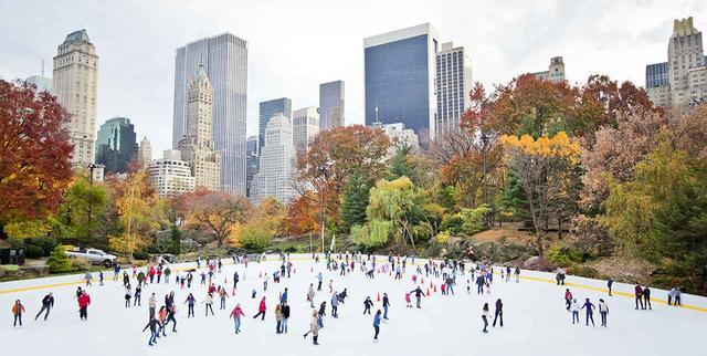 画像: ニューヨーク(アメリカ) 「スケートやクリスマスショー観劇」