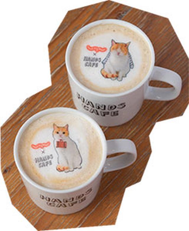 画像: にゃらんホットカフェオレ 650円 にゃらんがかわいく浮かぶカフェオレ。2種類の柄はランダムで提供。