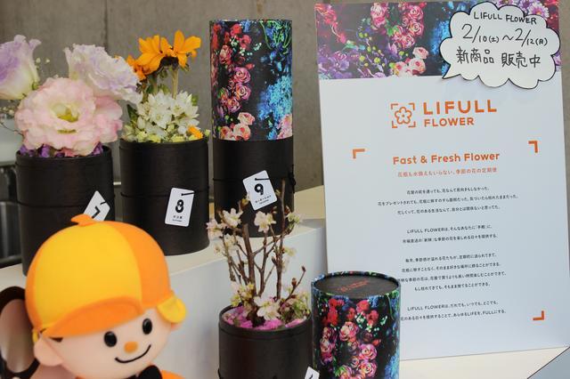 画像1: お花のある暮らしを♡