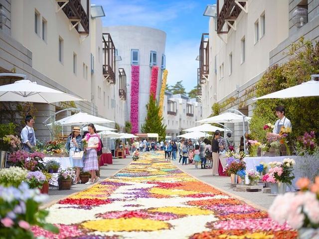 画像: 1 チューリップの花びらを敷き詰めた「花畳の回廊」