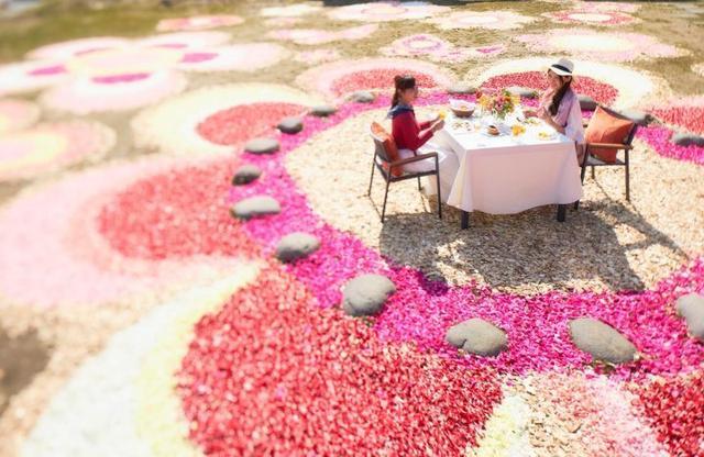 画像5: 花に囲まれた滞在3つのポイント