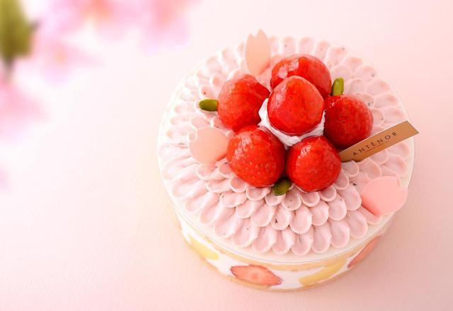 画像: 【春限定】さくらクリームで満開の花を描いた新作ケーキが「アンテノール」から登場!