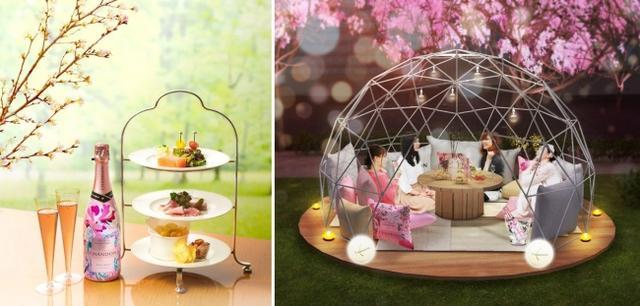画像: 「桜スパークリングセット」(写真左) 自家製のスモークサーモンコンフィー、パテ・ド・カンパーニュ、スパークリングワイン風味のポテトチップスなど、おすすめのメニューが並びます。(シャンドンロゼボトル1本付き) 「CHANDON SUITE」(写真右) ドーム型エリア「CHANDON SUITE」が初登場します。「桜スパークリングセット」ご注文のお客様のみ、先着順でご案内します。※設置日は後日東京ミッドタウンホームページでお知らせします。