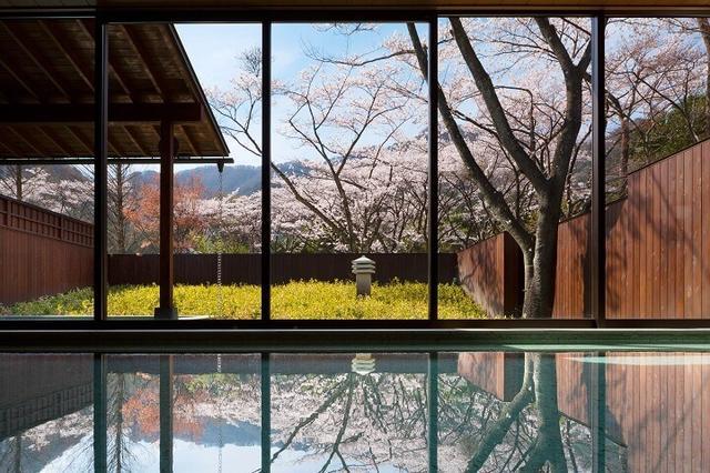画像2: 満開の桜を愛でる花見露天