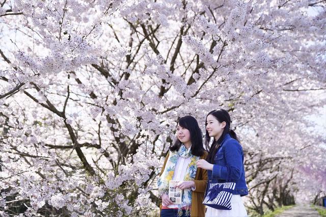 画像: 加賀伝統の彩りにあふれた 春のご滞在 2018|星野リゾート 界 【公式】