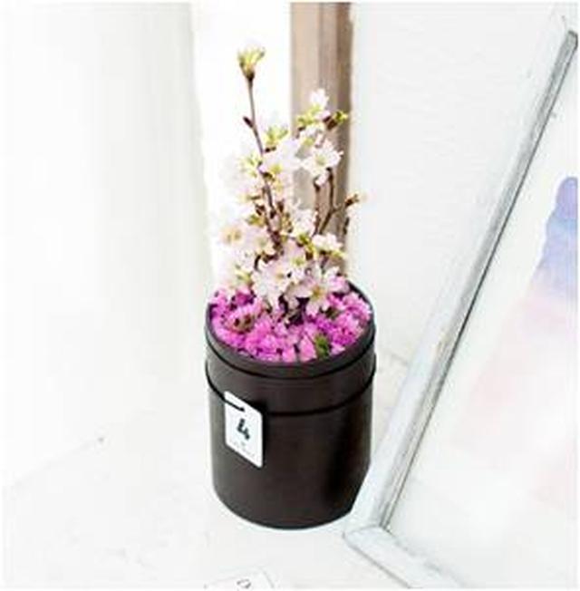 画像2: 毎月届く季節のお花にワクワク