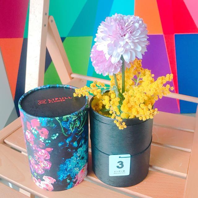 画像: 3月のお花「ピンポン菊」が届きました!