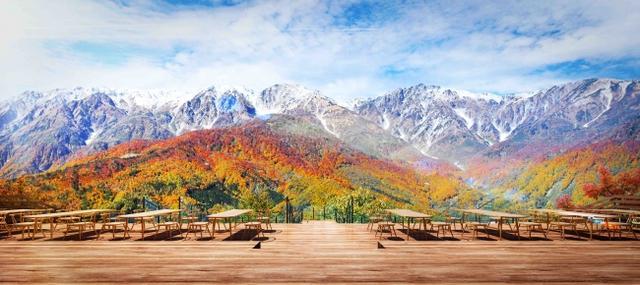 """画像2: 日本でも希少な絶景""""三段紅葉""""が一望できる標高1290mの山頂テラス『HAKUBA MOUNTAIN HARBOR』"""