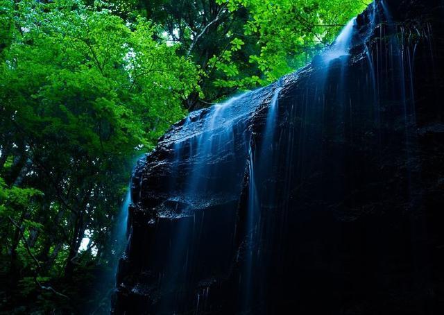 画像1: 飛龍の滝ガイドツアー