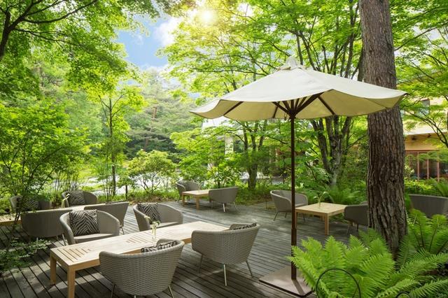 画像4: アフタヌーンティーBOXに広がる、軽井沢の夏の風景