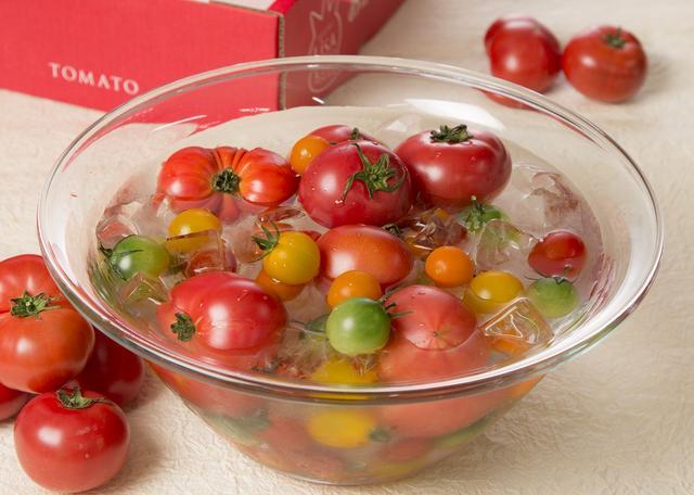 画像: トマトすくい 金魚すくいの要領でトマトをすくって下さい。すくったトマトはもちろんその場でお楽しみいただけます。