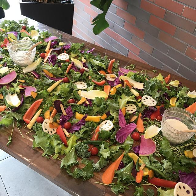画像: ◆野菜の庭