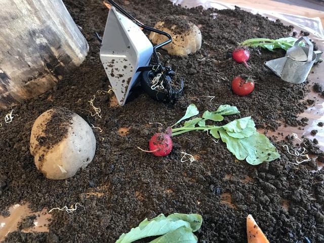 画像2: ◆食べられる土