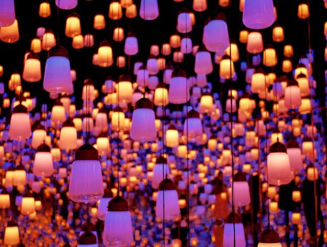 画像: 「ランプの森」