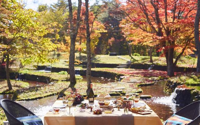 画像: 一足早い紅葉を眺められる特別席で、秋の味覚を味わう 「紅葉フルーツBBQ」開催