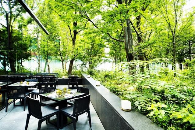 画像3: 森の緑に包まれ、クロワッサンとカフェオレでさわやかな一日の始まりを