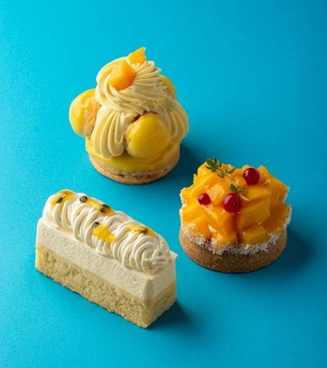 画像1: オリジンヌ・カカオの夏の新作ガトーは「フルーツとココナッツ」
