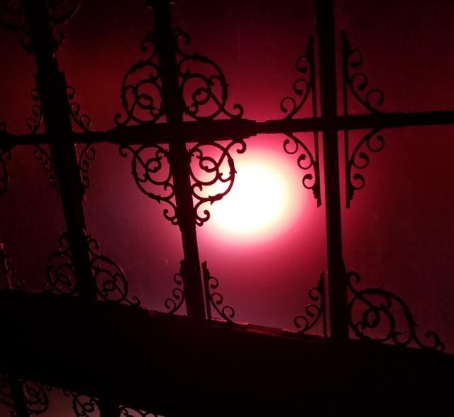 画像3: フォトジェニックな夜の美術館がお化け屋敷に