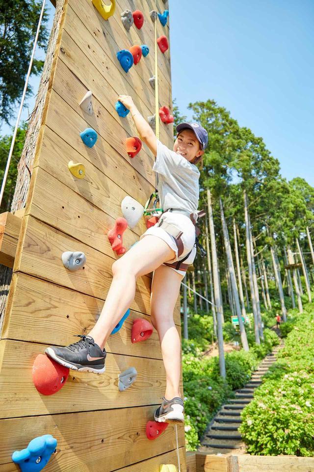 画像1: 【体験レポ】三島スカイウォークのジップライン、樹上アスレチック、クライミング…都会では味わえない「遊び場」出現に大興奮!